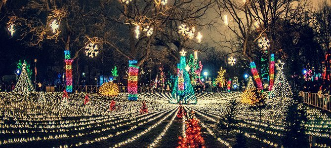 Exceptional ZooLights