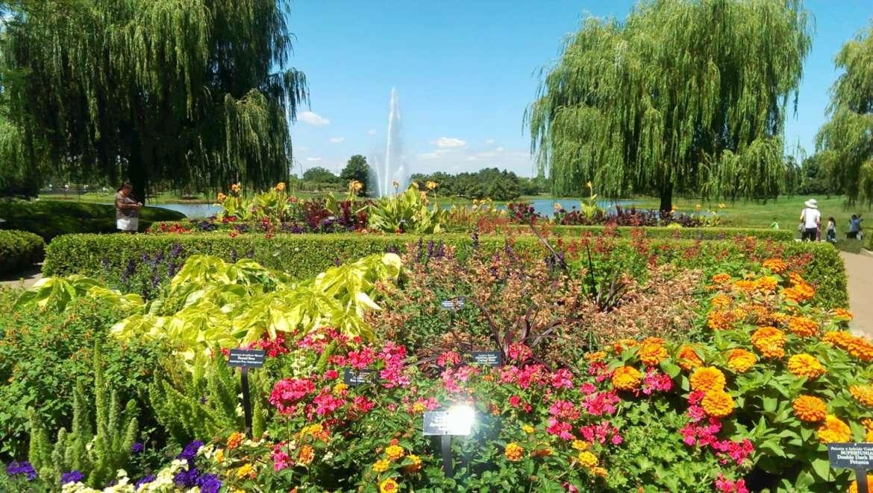 Chicago S Hidden Gems Unique Parks And Gardens