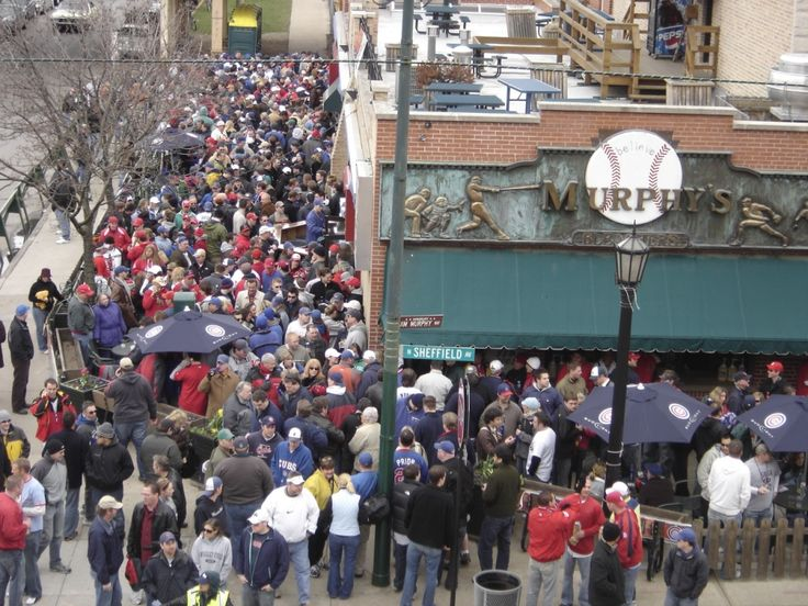 best cubs bars