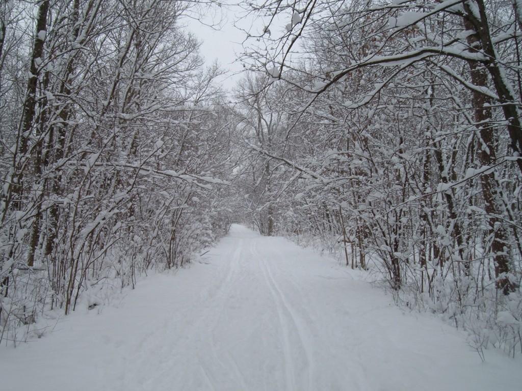 Deer Grove
