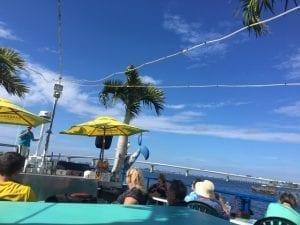 Exploring Sarasota Bay with Eco-Tours. Photo by Mira Temkin