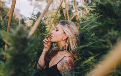 recreational marijuana bill