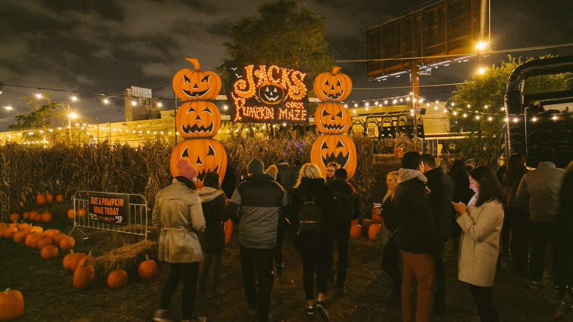 jacks pumpkin pop-up