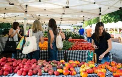 green city market