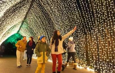 lightscape chicago botanic garden