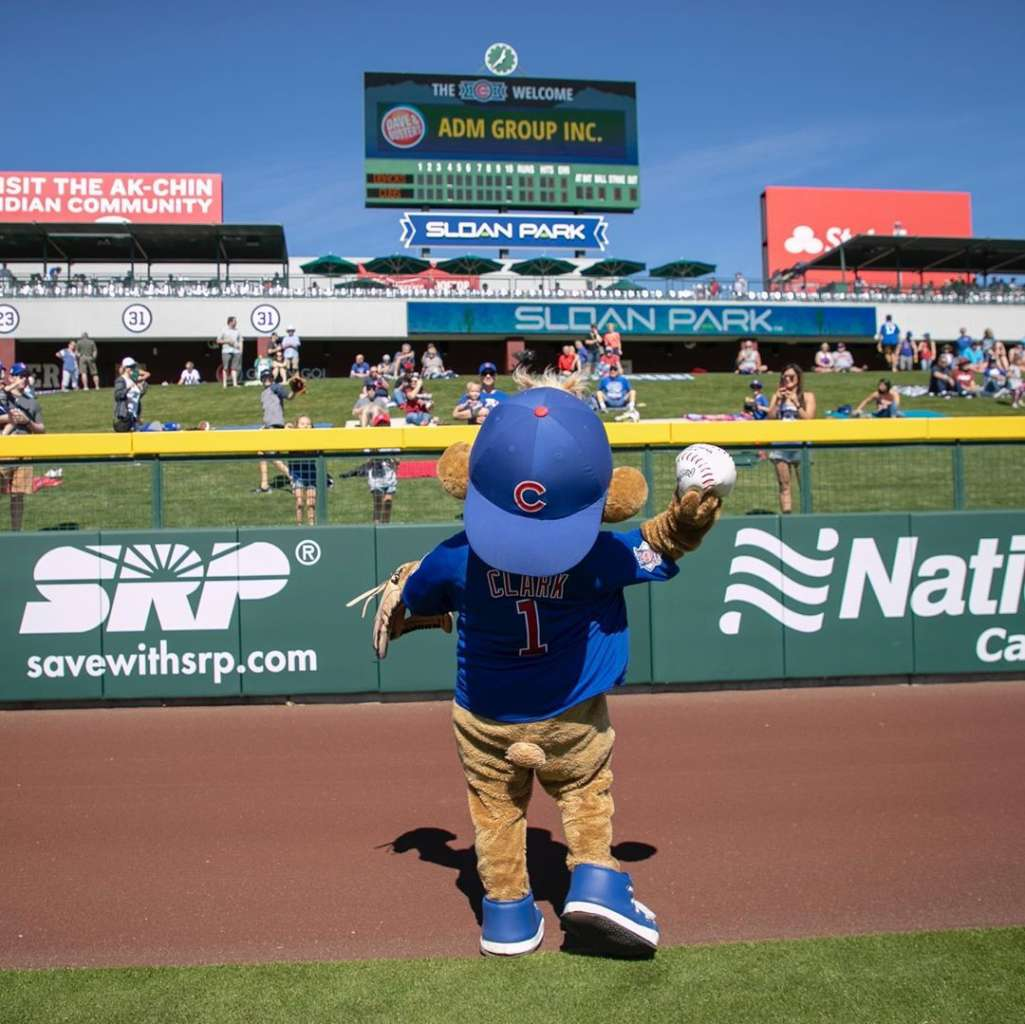 cubs spring training mascot