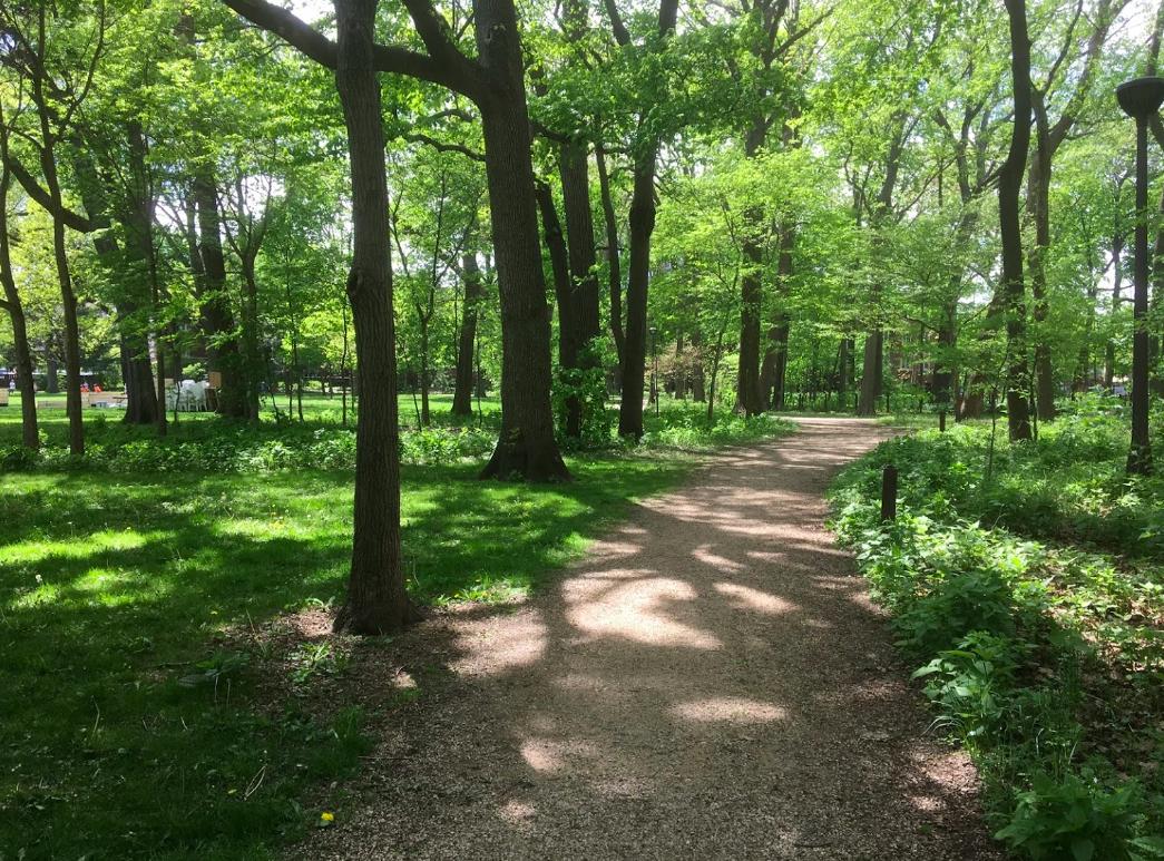 austin gardens
