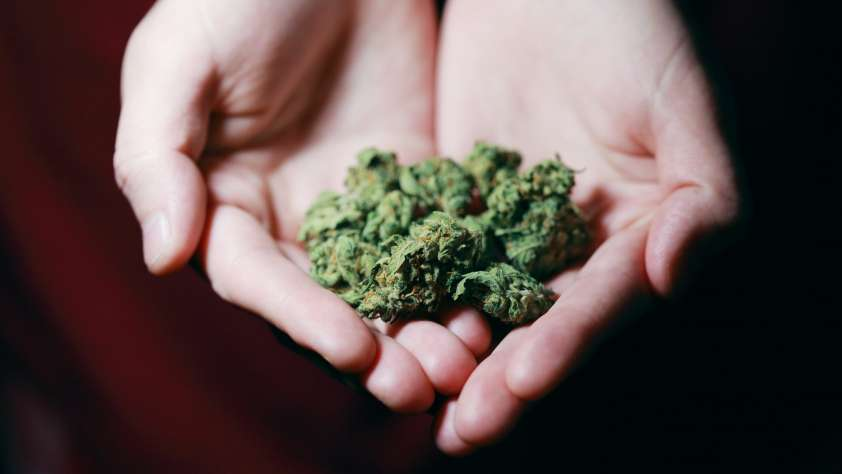 Naperville Recreational Cannabis Sales