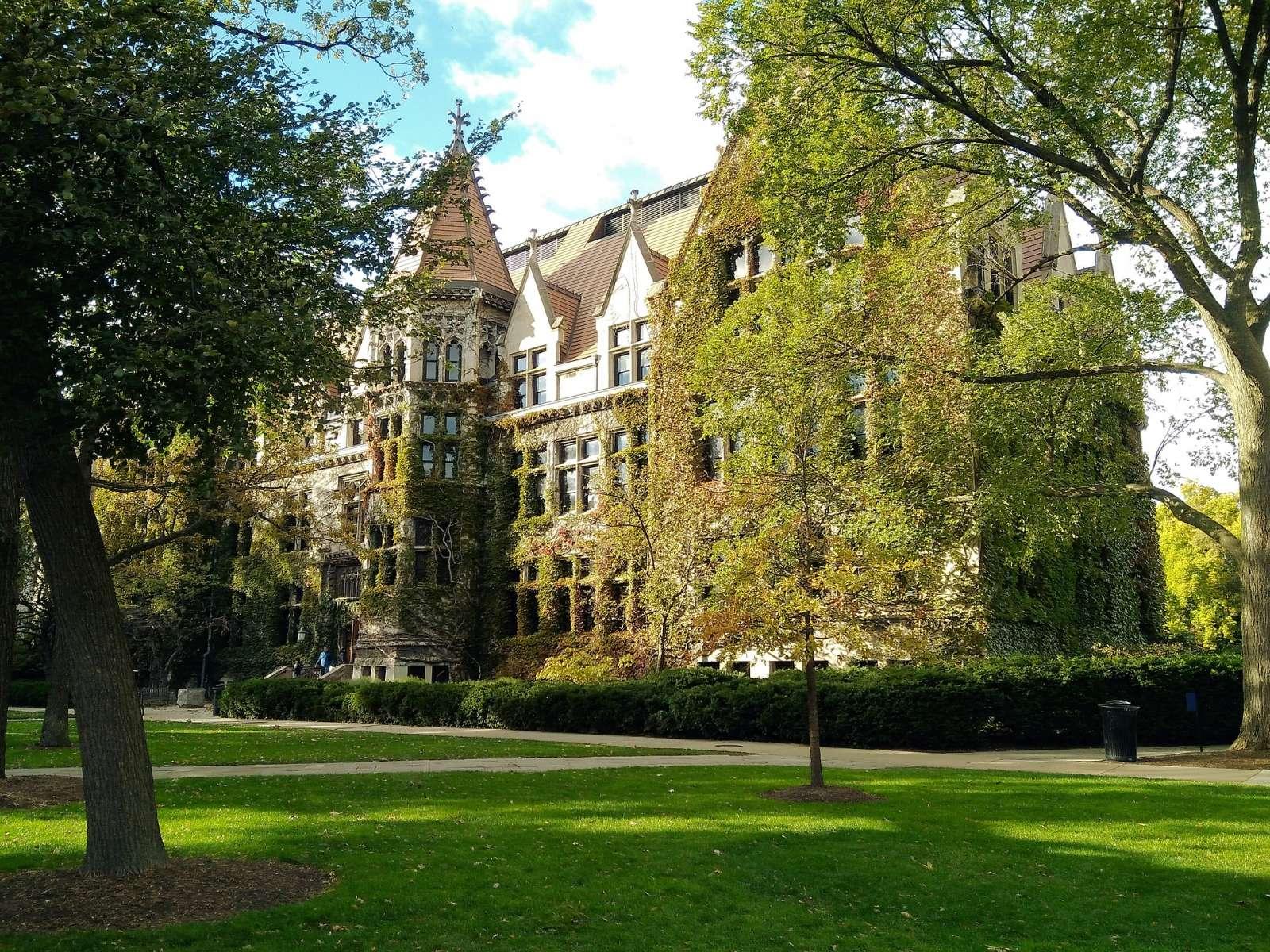 Chicago Colleges