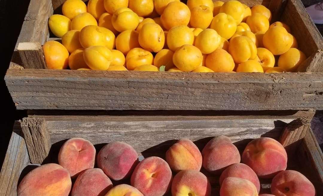 Peoria Farmers Market