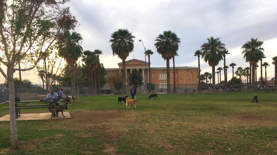 Dog Parks in Phoenix