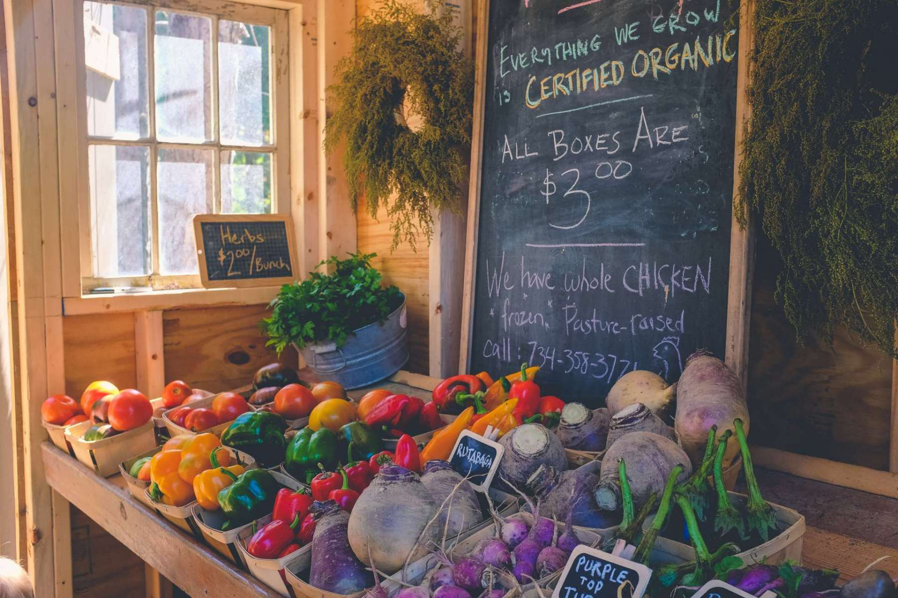 organic stores in phoenix