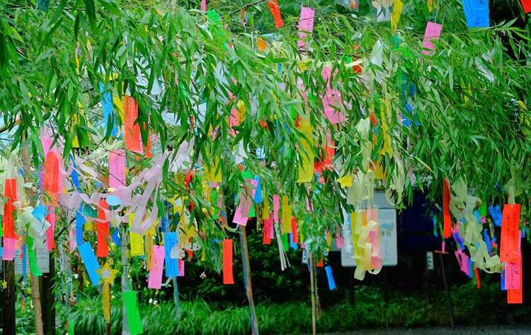 tanabata with Japanese Friendship Garden