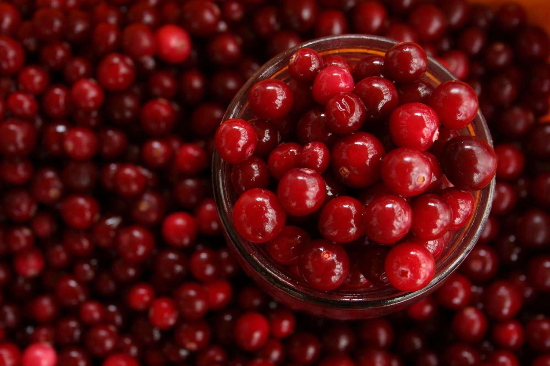 Thanksgiving Cranberry Sauce